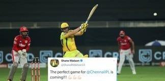 Shane Watson tweet