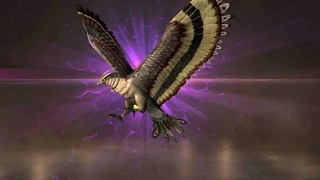 Falco - FirstSportz