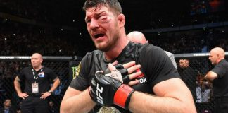 Michael Bisping assaulted