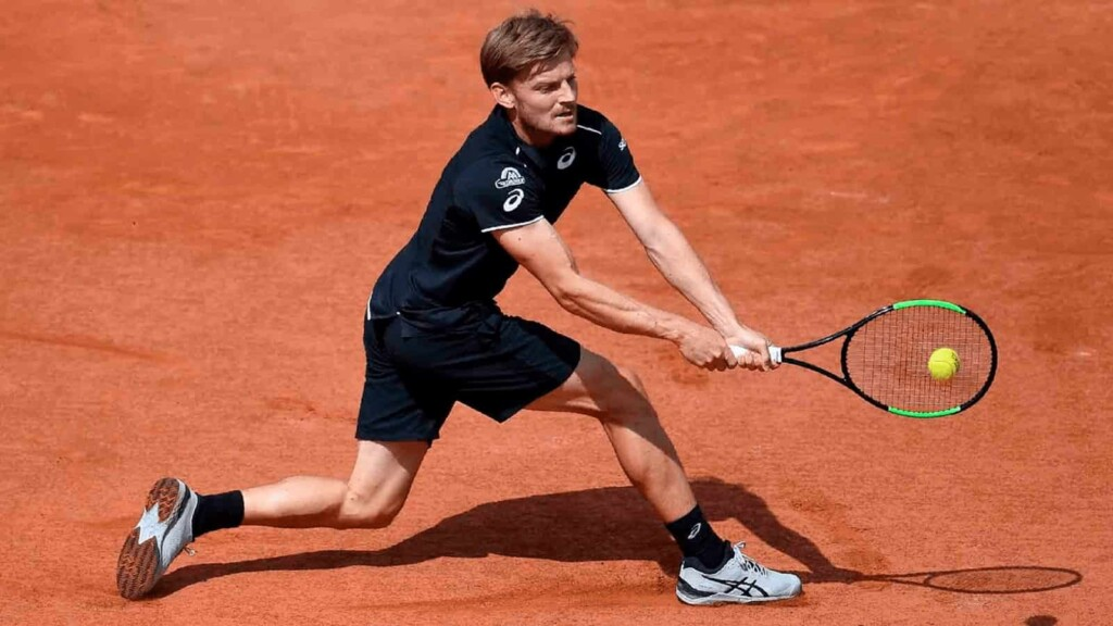 David Goffin will be the favourite in the upcoming Aljaz Bedene vs David Goffin clash at the Lyon Open 2021.