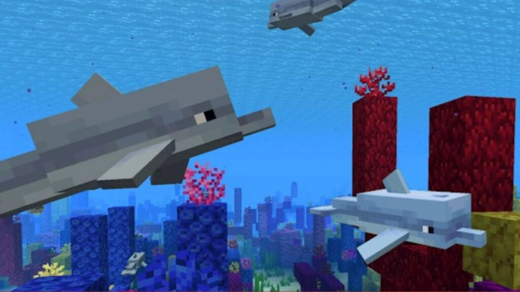 Dolphin Minecraft