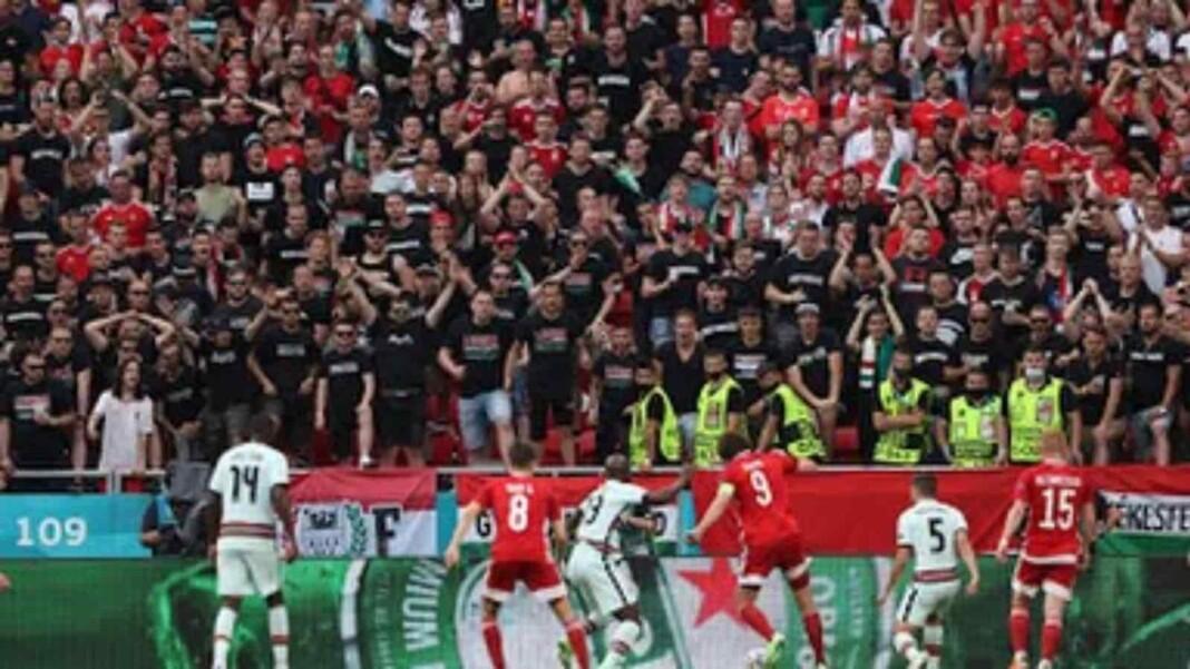 Portugal Vs Hungary Player Ratings