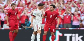 Belgium Vs Denmark Player Ratings