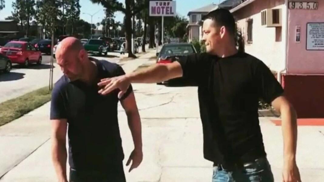 Nate Diaz slapped Dana White