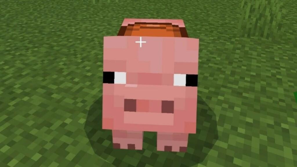 Pigs in Minecraft