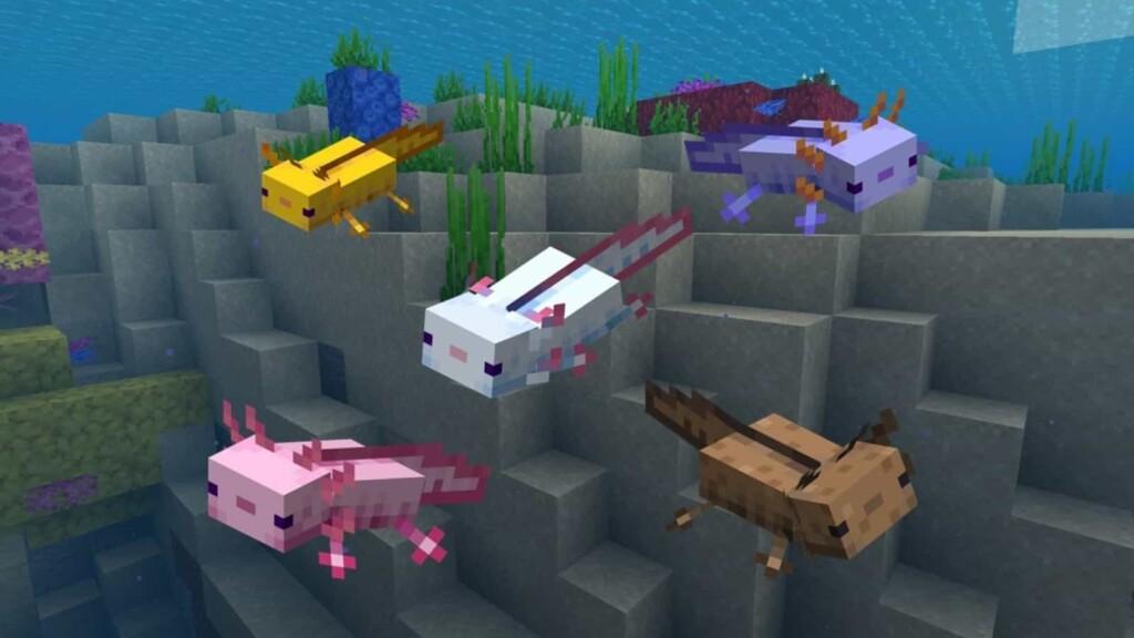 Popular Animals in Minecraft