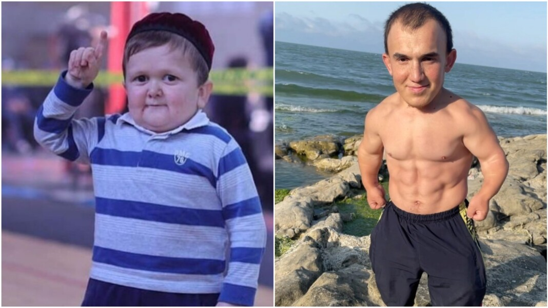 Mini Khabib Hasbulla Magomedov and Tain