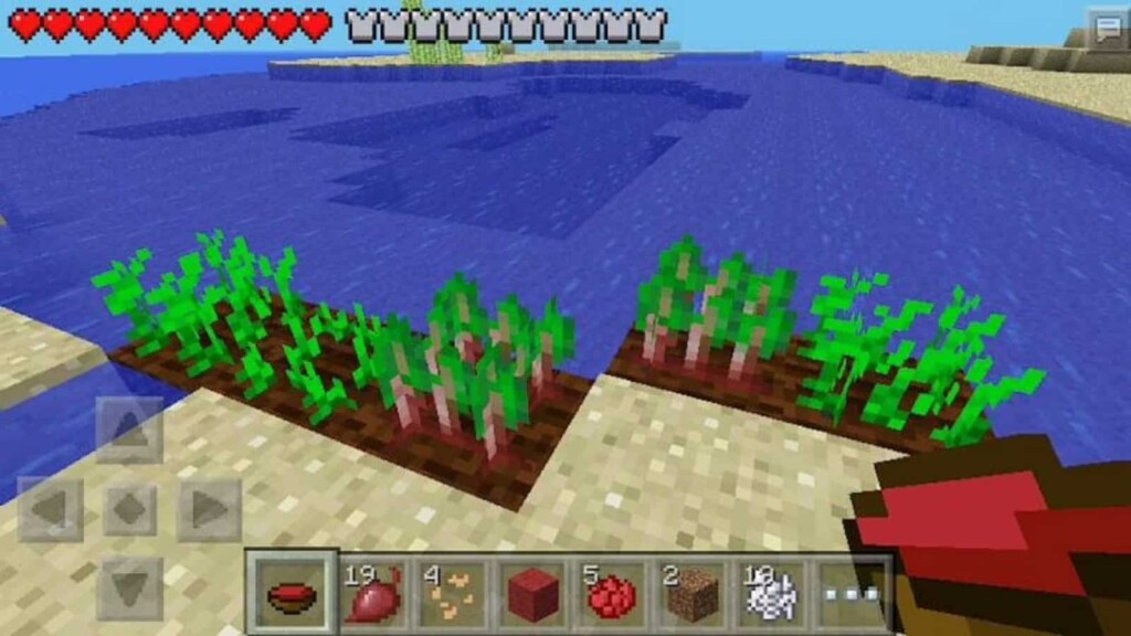 Beetroot Soup in Minecraft