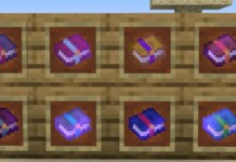 Enchanted Book in Minecraft