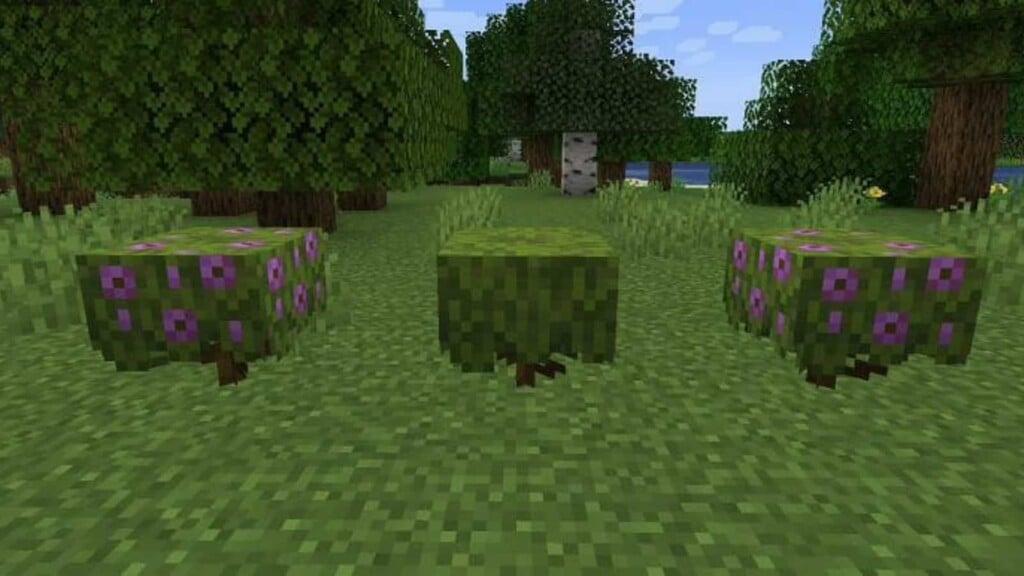 Minecraft Azalea