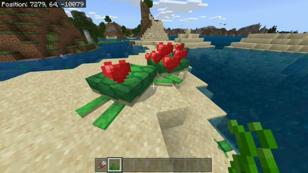 Minecraft Turtle