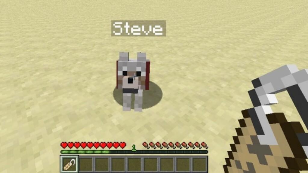 Name Tag in Minecraft 2 - FirstSportz