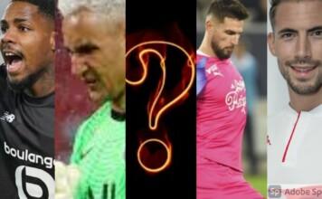 Top 5 Goalkeepers in Ligue 1?