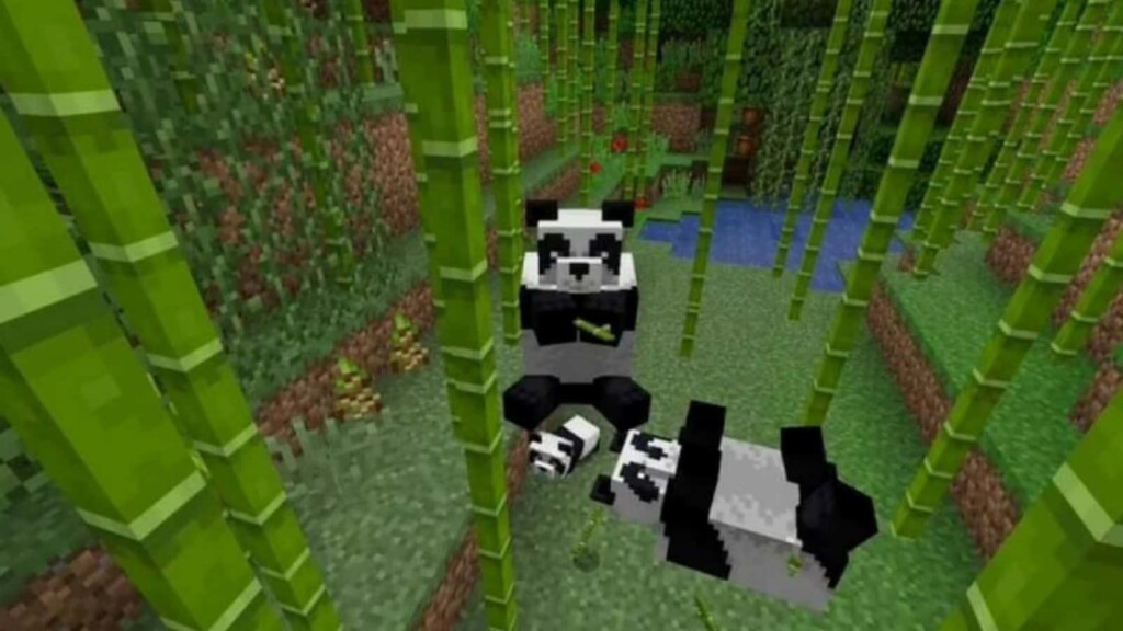 How to breed Pandas in Minecraft