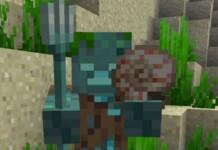 Minecraft Nautilus Shell