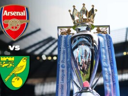 Premier League: Arsenal vs Norwich City Player Ratings as the Gunners steal three full points