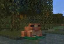 Minecraft Frogs
